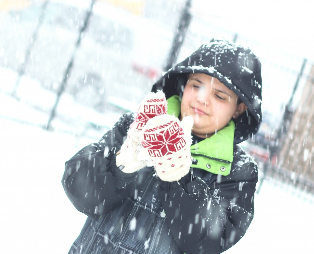 snowy day 3