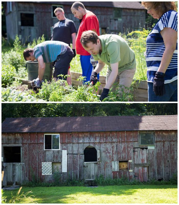 farm college 1