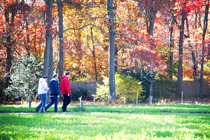 nssa-nassau-suffolk-services-for-autism-fox-hollow-farm-11-10-16-25-resized