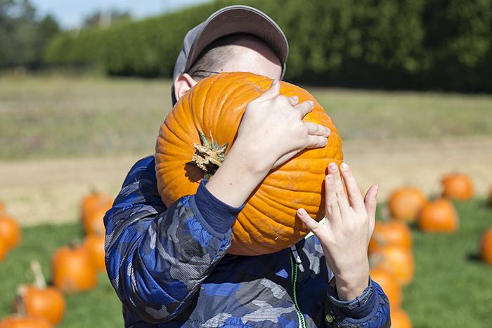 nssa nassau suffolk services for autism long island school pumpkin 10.19.18 5 blogsized